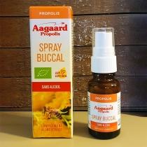 Spray buccal